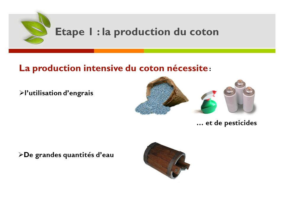 Etape 1 : la production du coton