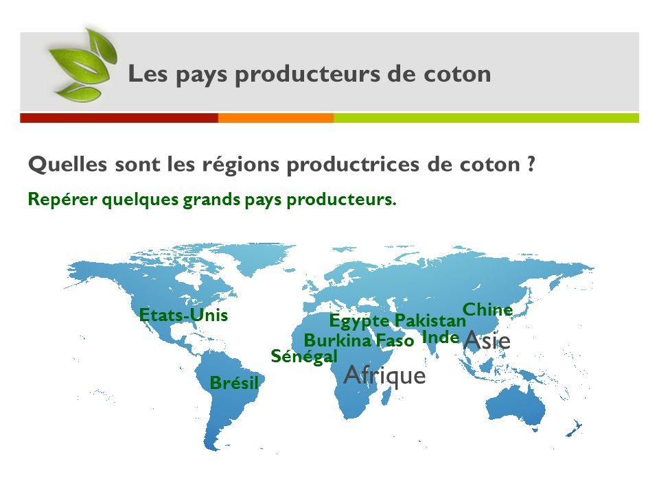 Asie Afrique Les pays producteurs de coton