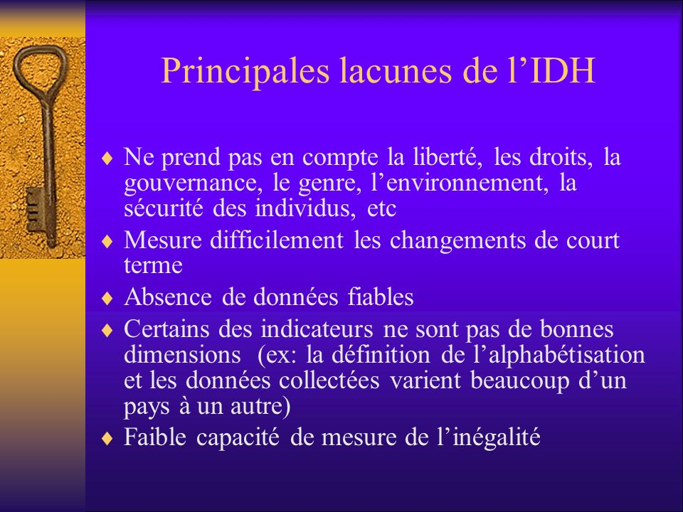 Principales lacunes de l'IDH