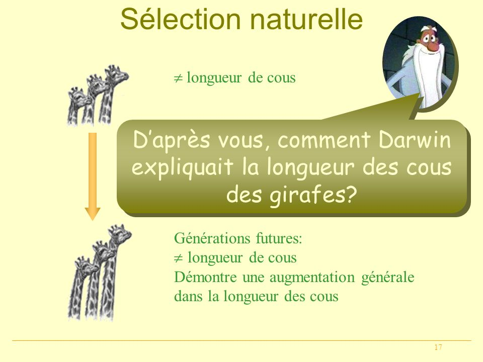 Sélection naturelle  longueur de cous. D'après vous, comment Darwin expliquait la longueur des cous des girafes