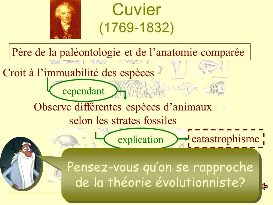 Cuvier (1769-1832) Père de la paléontologie et de l'anatomie comparée. Croit à l'immuabilité des espèces.