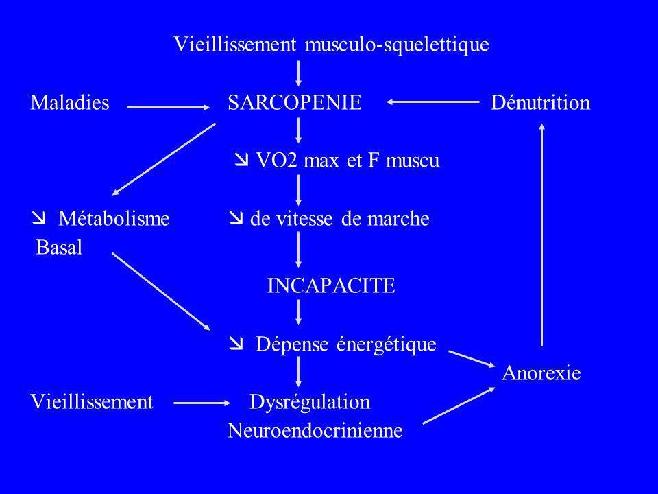 Vieillissement musculo-squelettique