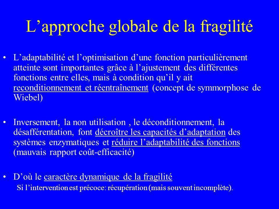 L'approche globale de la fragilité