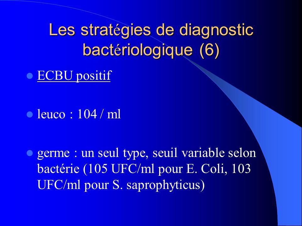 Les stratégies de diagnostic bactériologique (6)