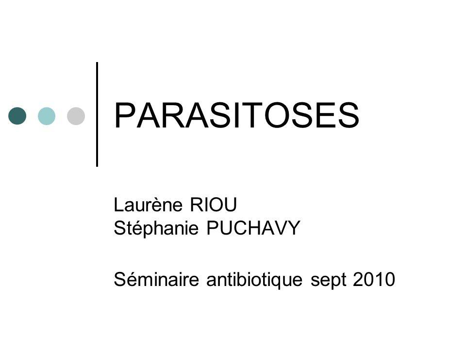 Laurène RIOU Stéphanie PUCHAVY Séminaire antibiotique sept 2010