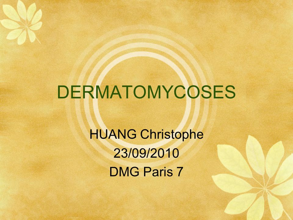 HUANG Christophe 23/09/2010 DMG Paris 7