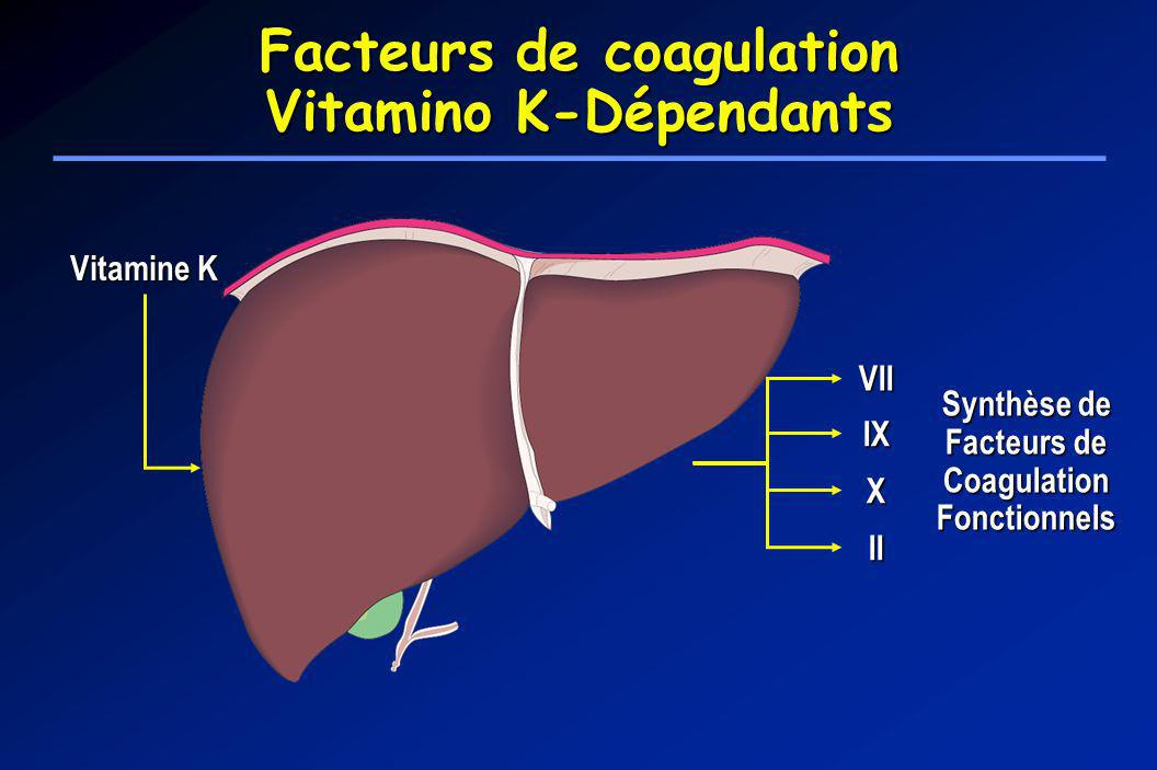 Facteurs de coagulation Vitamino K-Dépendants