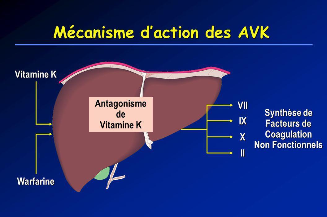 Mécanisme d'action des AVK