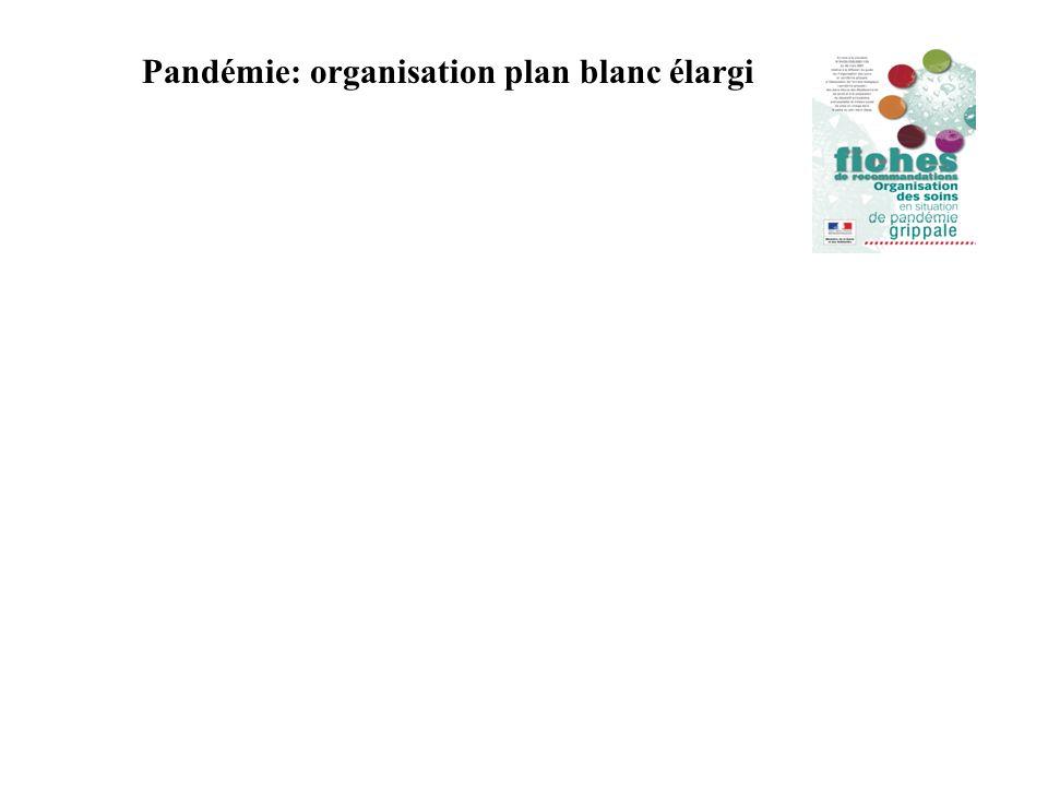 Pandémie: organisation plan blanc élargi