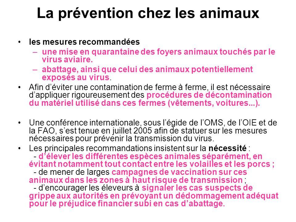 La prévention chez les animaux