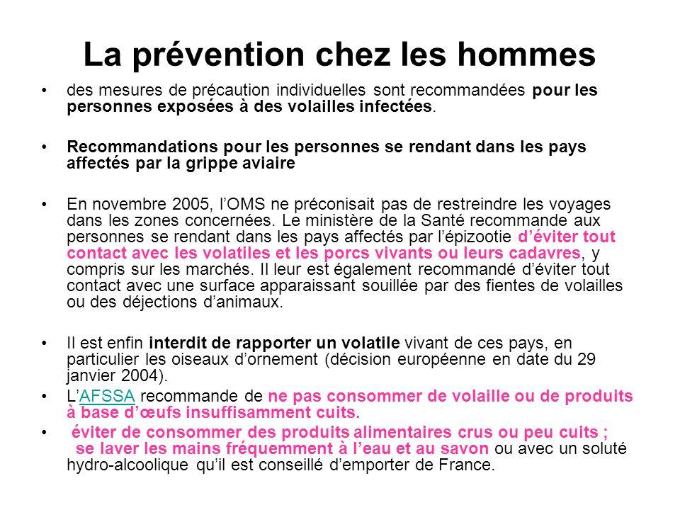 La prévention chez les hommes