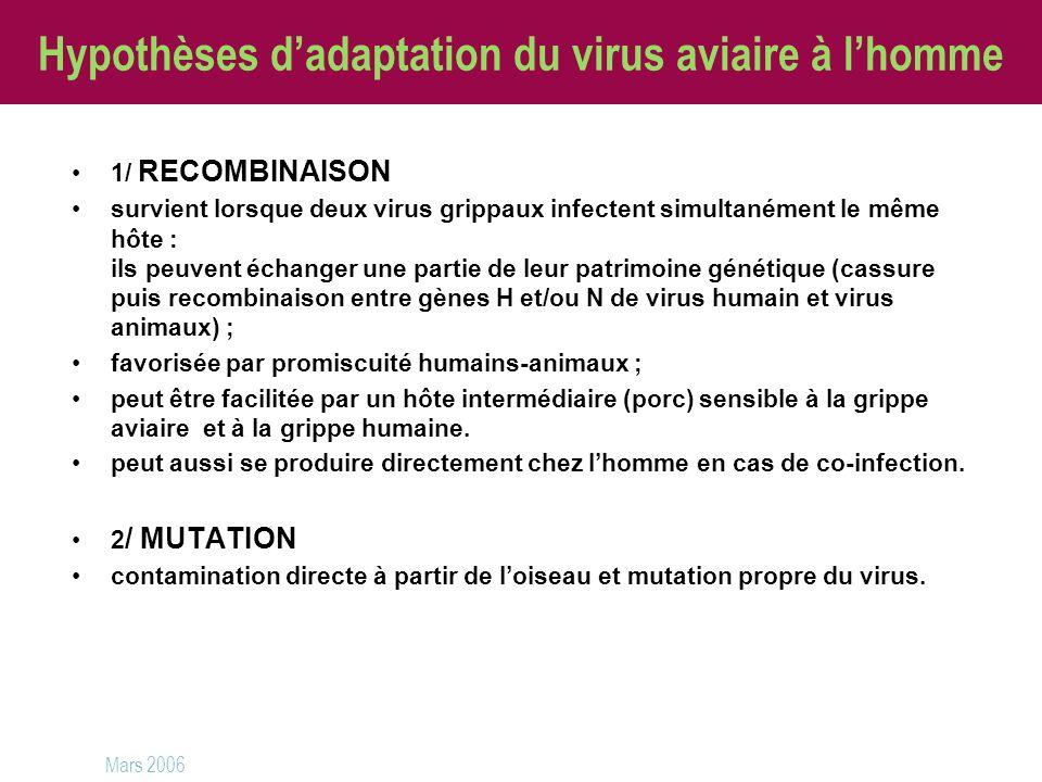 Hypothèses d'adaptation du virus aviaire à l'homme