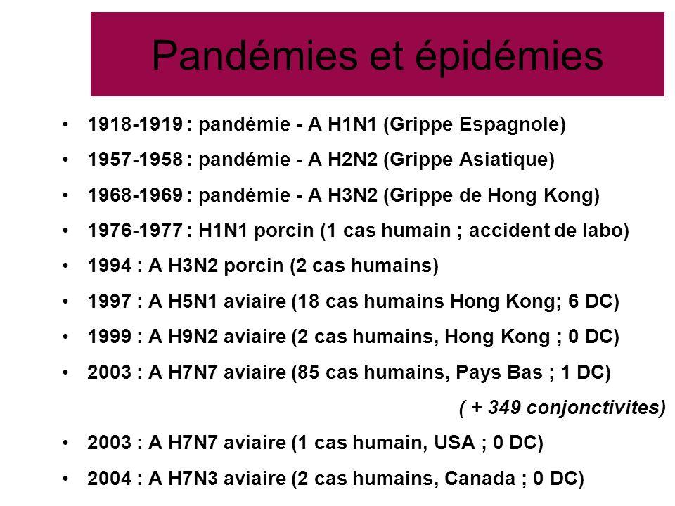 Pandémies et épidémies