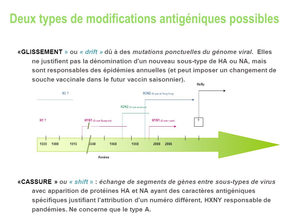 Deux types de modifications antigéniques possibles