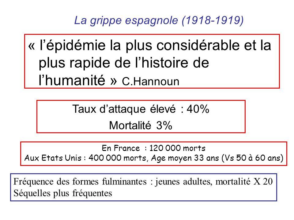 La grippe espagnole (1918-1919)