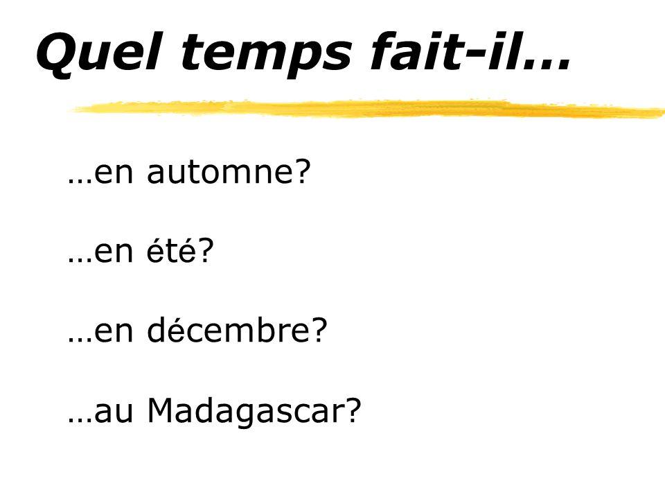 Quel temps fait-il… …en automne …en été …en décembre