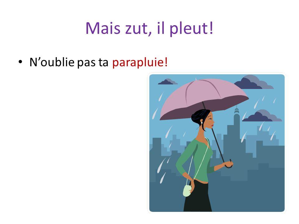 Mais zut, il pleut! N'oublie pas ta parapluie!