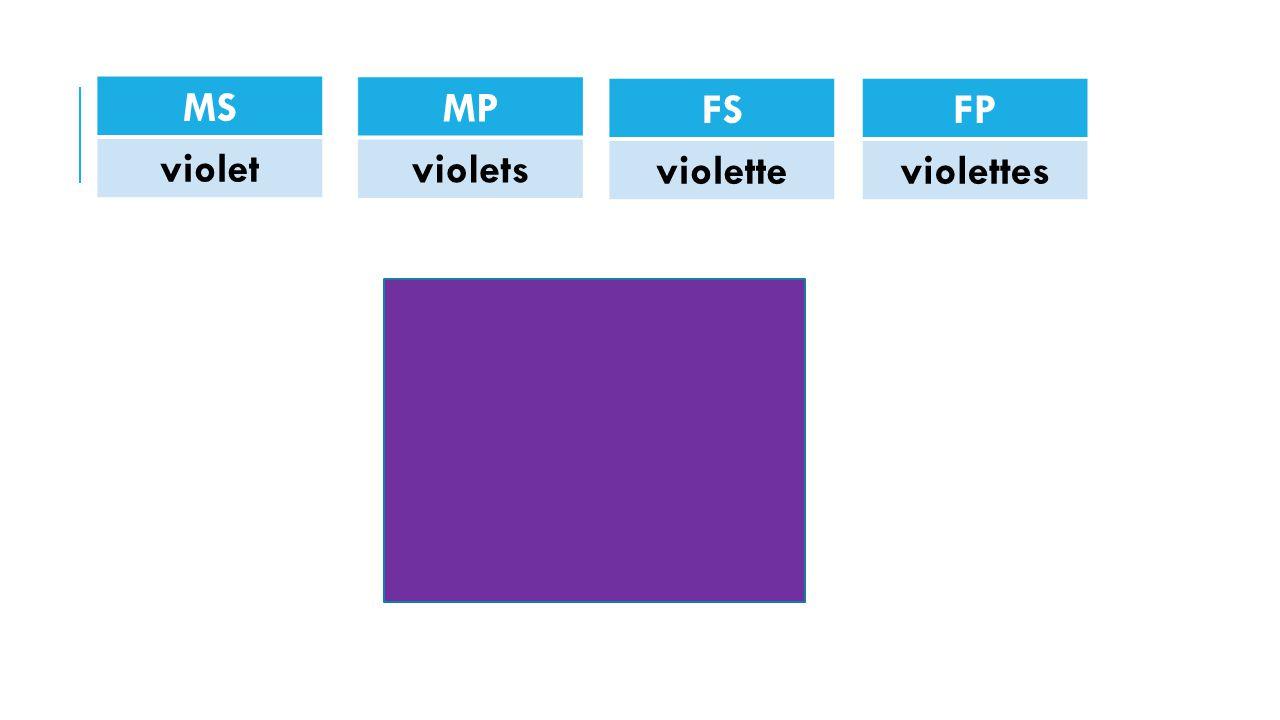 MS violet MP violets FS violette FP violettes