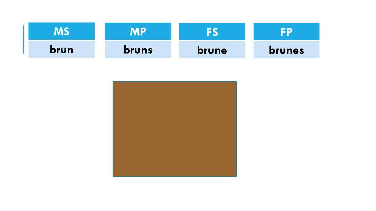 MS brun MP bruns FS brune FP brunes