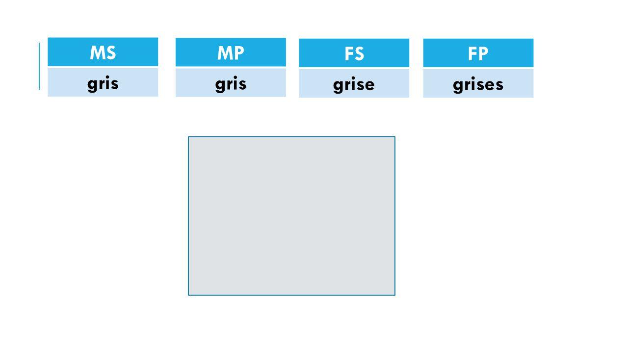 MS gris MP gris FS grise FP grises
