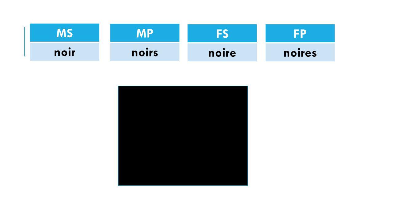 MS noir MP noirs FS noire FP noires