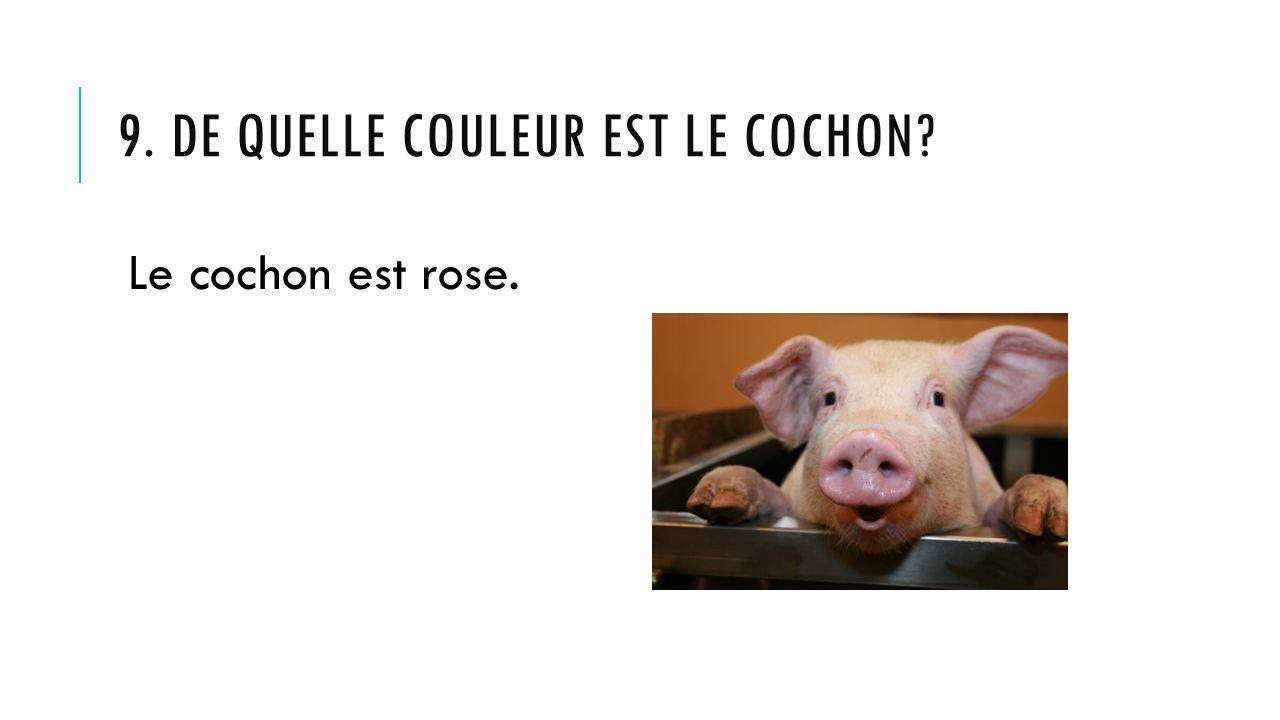 9. De quelle couleur est Le cochon