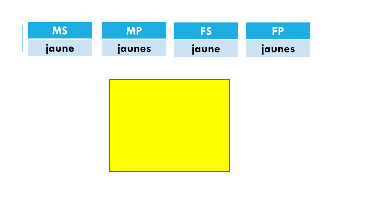MS jaune MP jaunes FS jaune FP jaunes