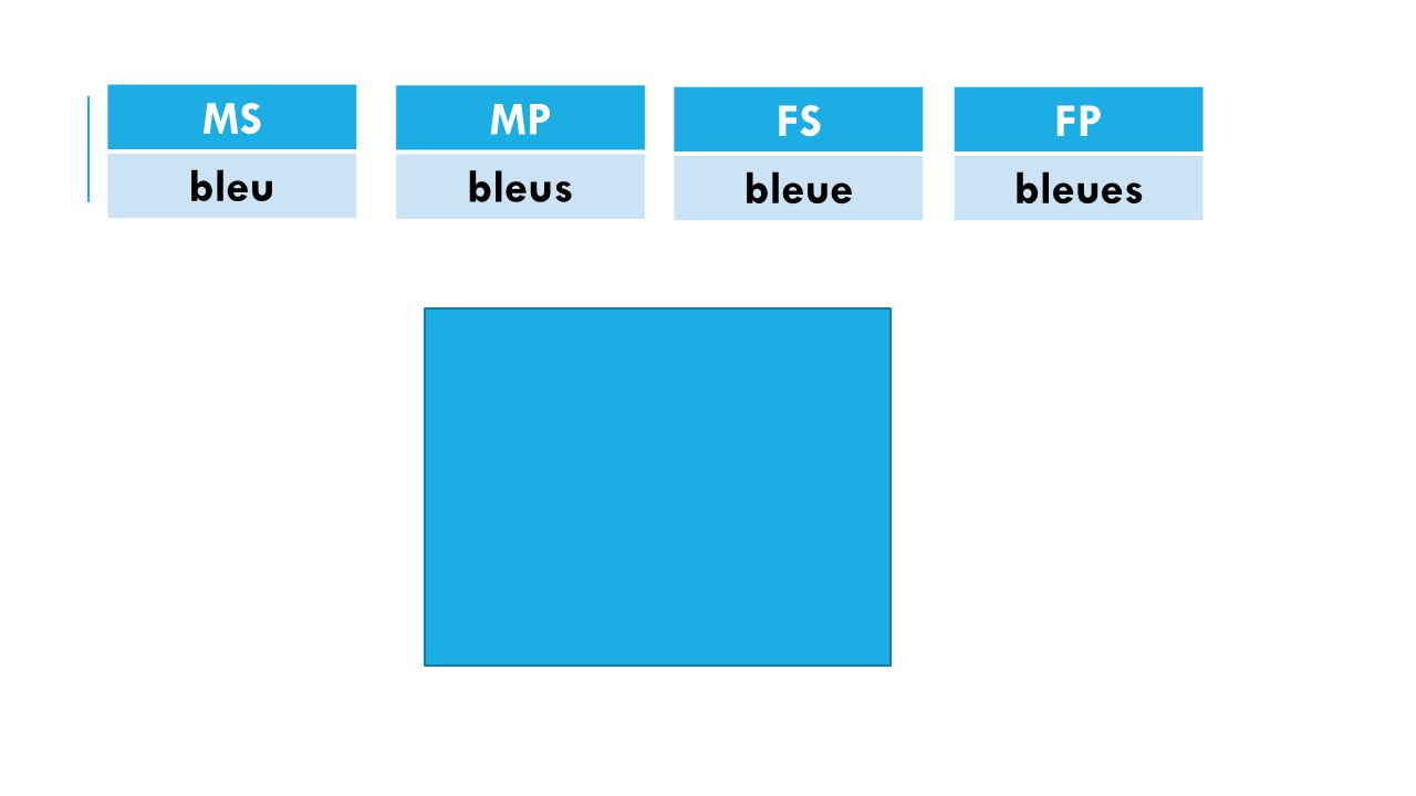 MS bleu MP bleus FS bleue FP bleues