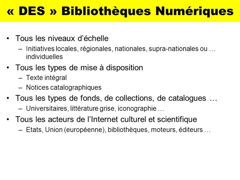 « DES » Bibliothèques Numériques