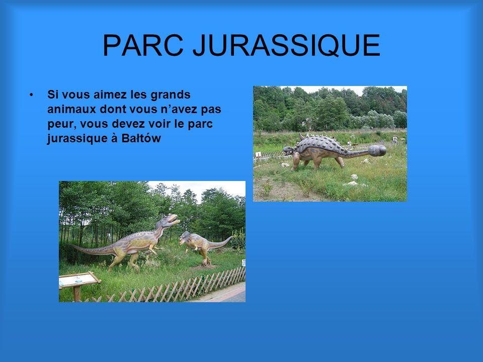 PARC JURASSIQUE Si vous aimez les grands animaux dont vous n'avez pas peur, vous devez voir le parc jurassique à Bałtów.