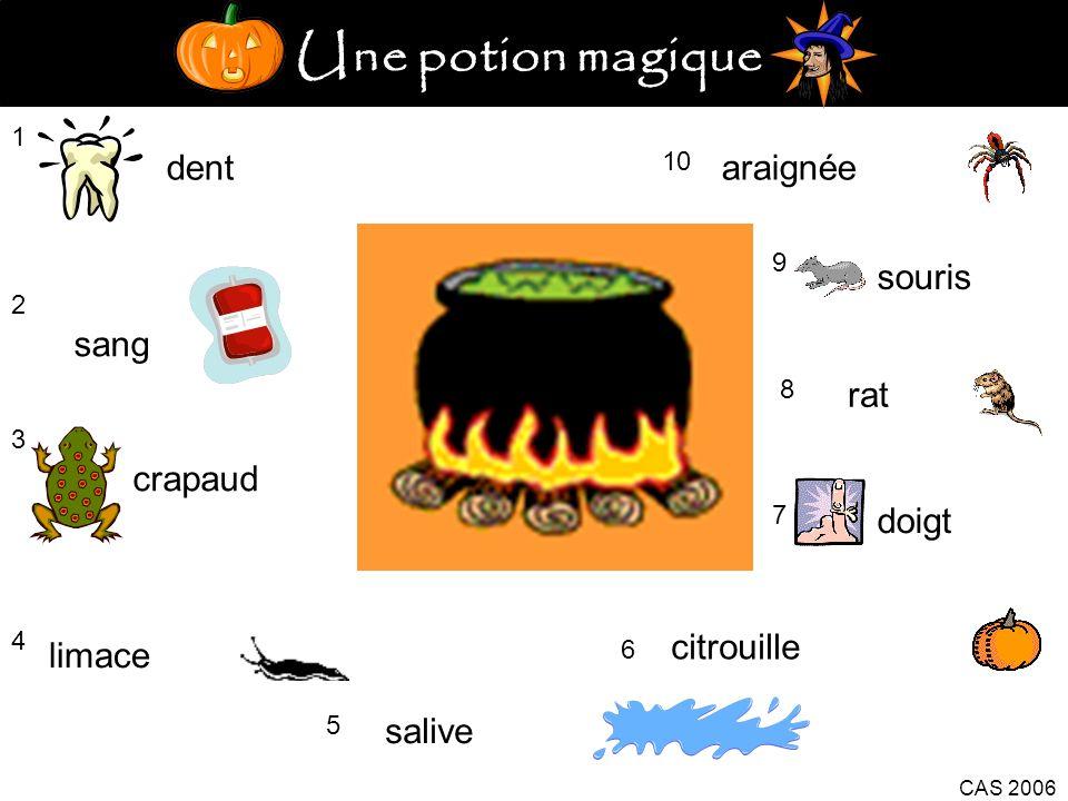 Une potion magique dent araignée souris sang rat crapaud doigt