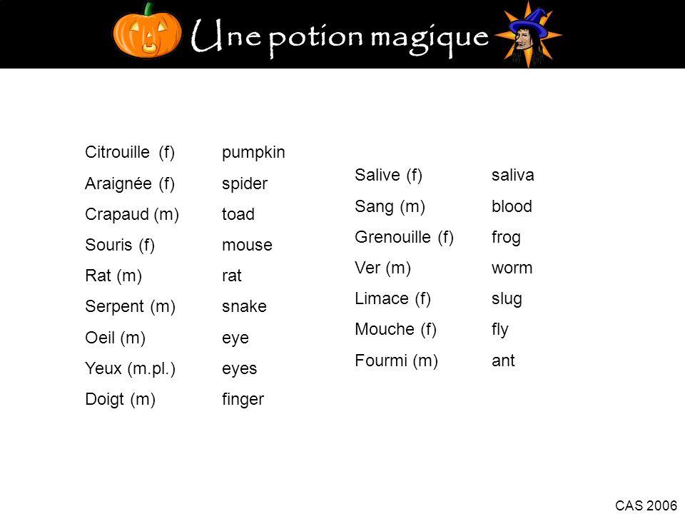 Une potion magique Citrouille (f) pumpkin Araignée (f) spider