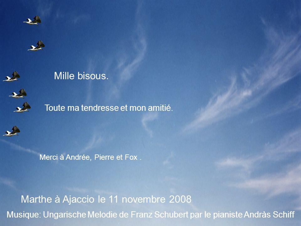 Marthe à Ajaccio le 11 novembre 2008