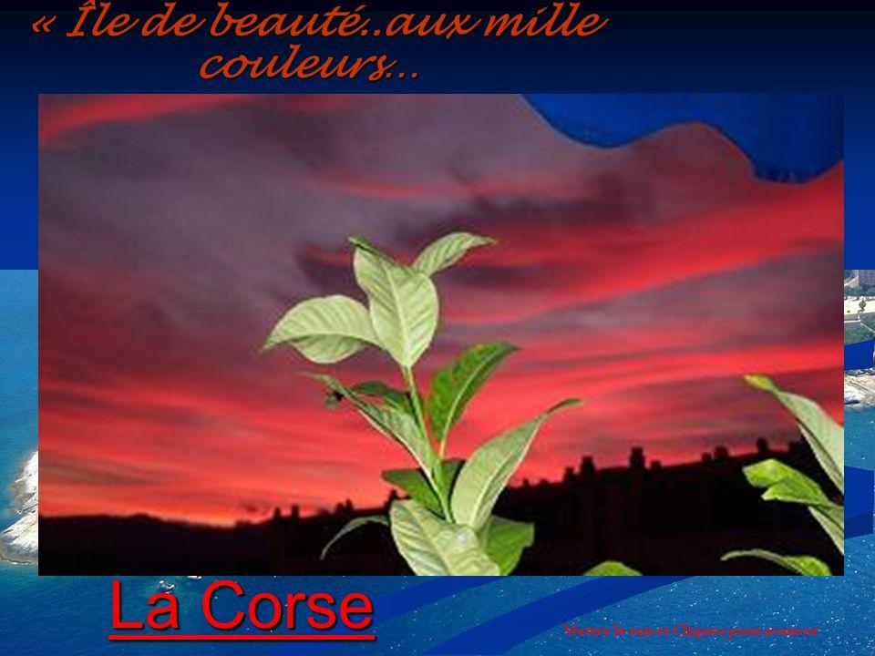 « Île de beauté..aux mille couleurs…
