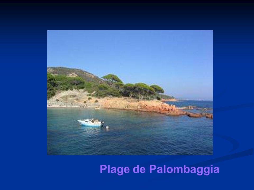 Plage de Palombaggia