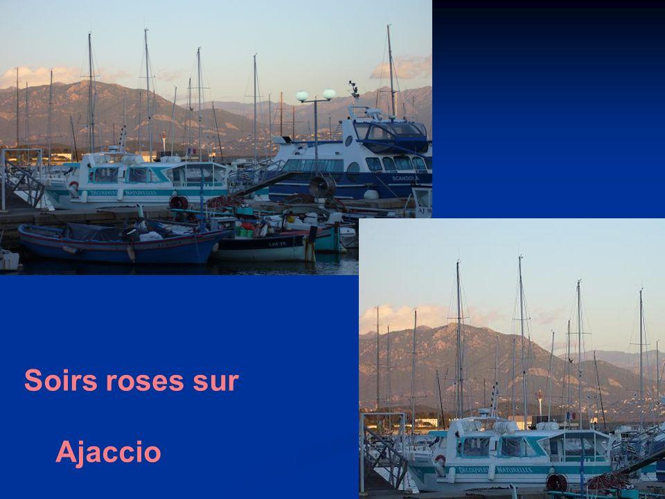 Soirs roses sur Ajaccio