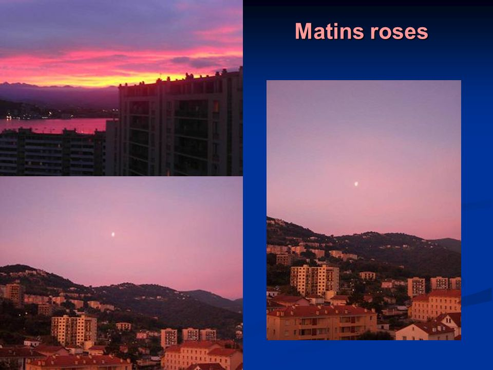 Matins roses