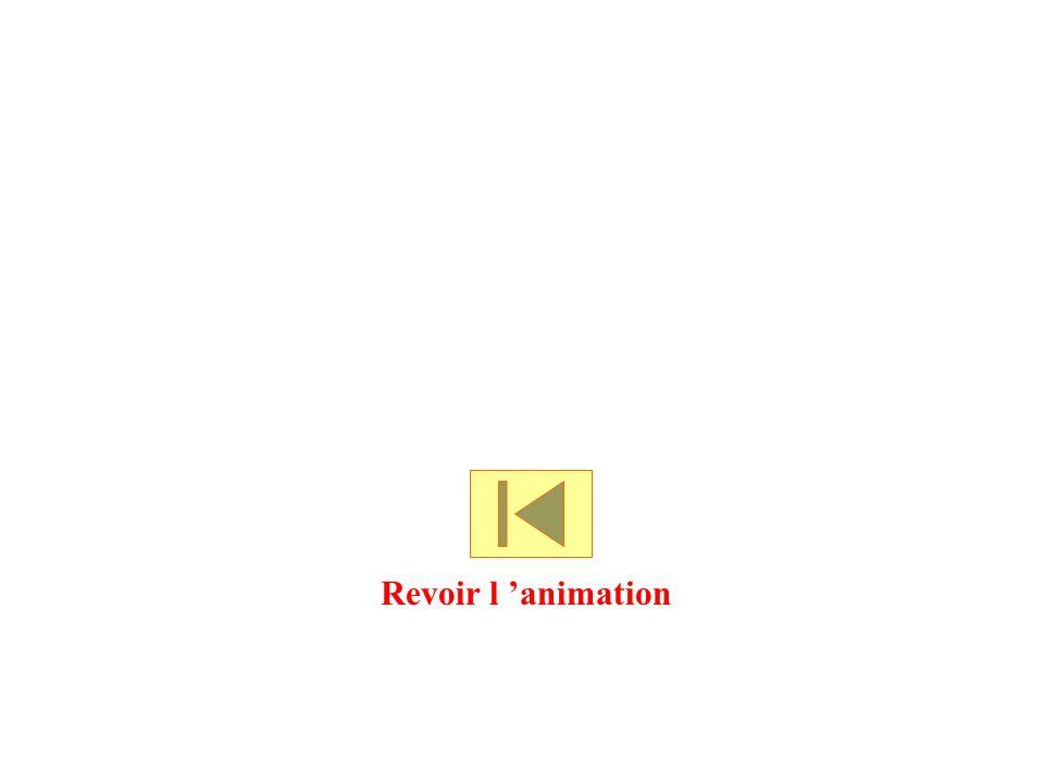 Revoir l 'animation