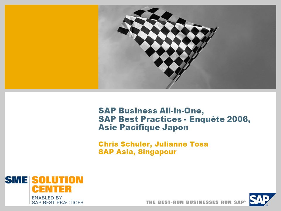 SAP Business All-in-One,