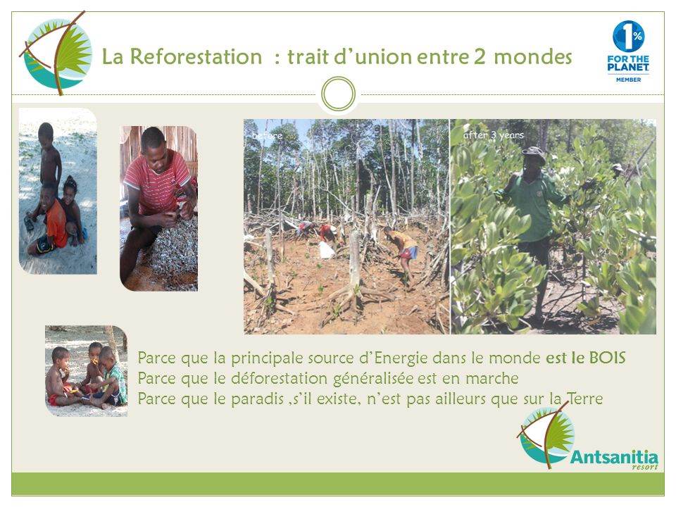 La Reforestation : trait d'union entre 2 mondes