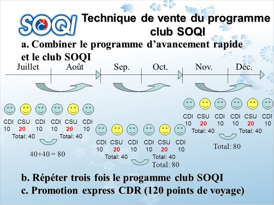 Technique de vente du programme