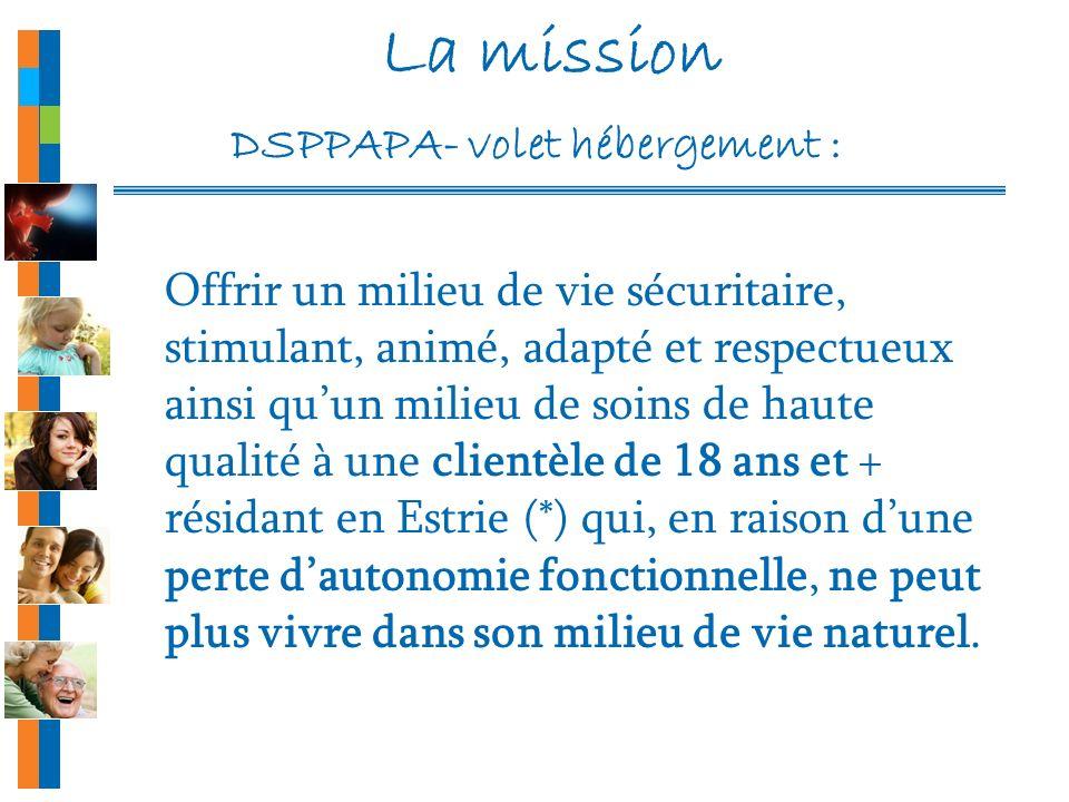 La mission DSPPAPA- volet hébergement :