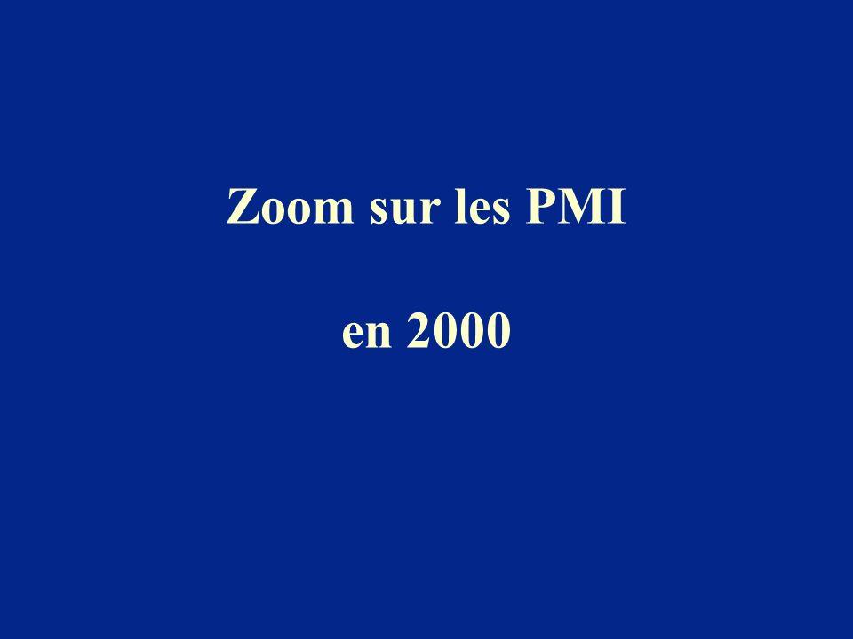 Zoom sur les PMI en 2000