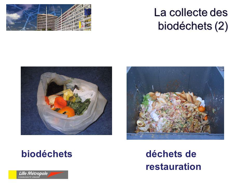 La collecte des biodéchets (2)
