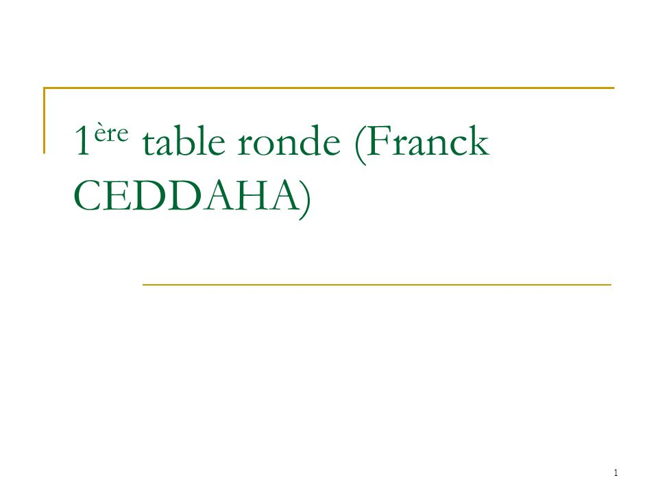 1ère table ronde (Franck CEDDAHA)