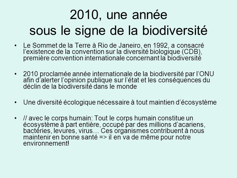 2010, une année sous le signe de la biodiversité