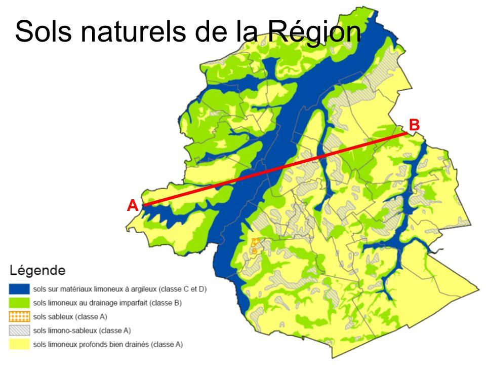 Sols naturels de la Région
