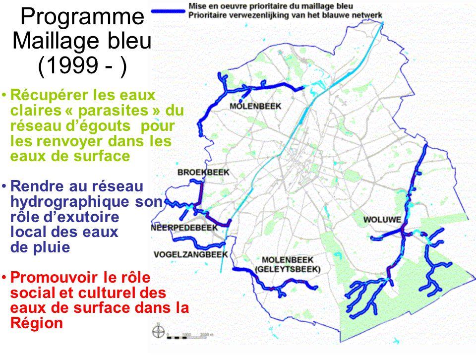 Programme Maillage bleu (1999 - )