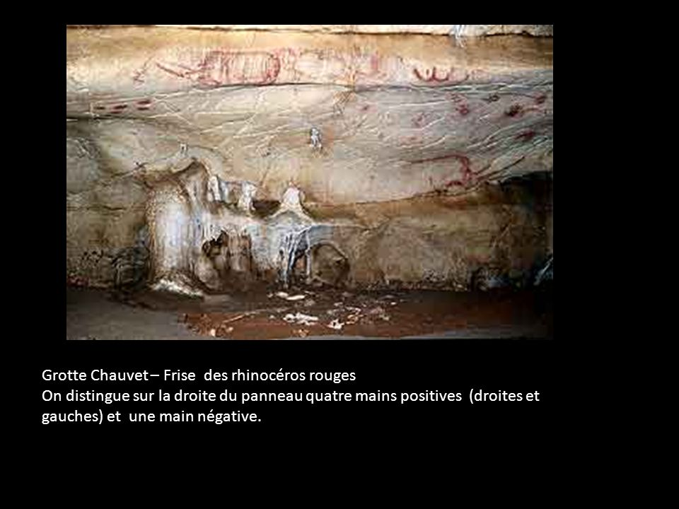 Grotte Chauvet – Frise des rhinocéros rouges