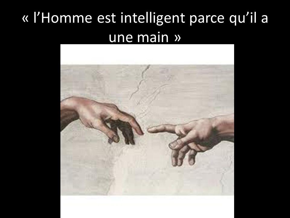 « l'Homme est intelligent parce qu'il a une main »